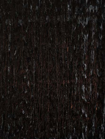 Persia/Crushed Velvet Midnight 1124/MIDN/A